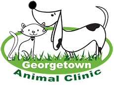 Georgetown Animal Clinic